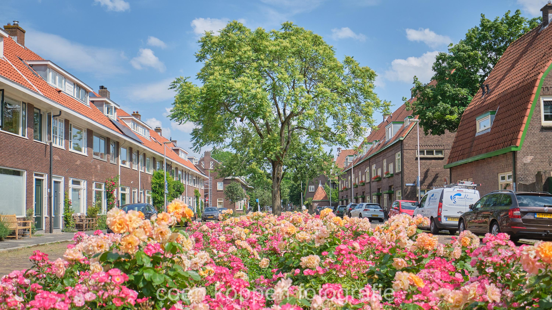 Bloemenperk Gerard Noodtstraat voor het De Tuinwijk 100 jaar gedenkboek door Coen Koppen Fotografie